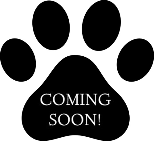 coming-soon-paw