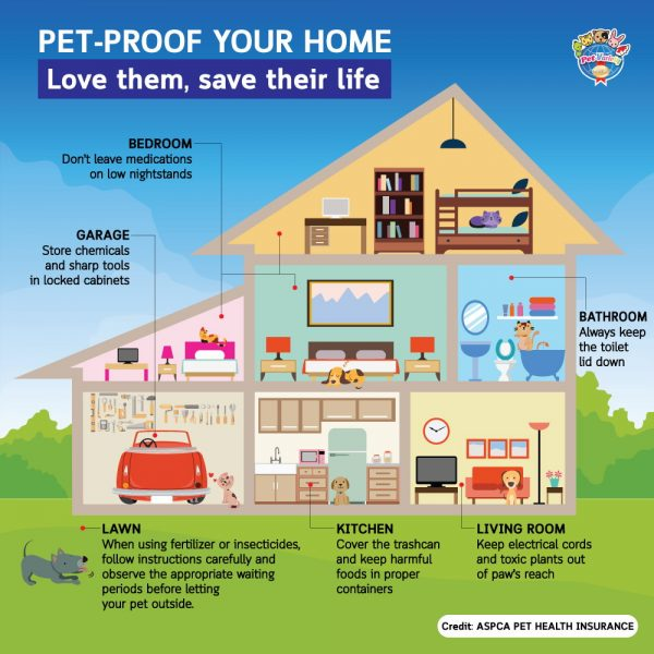 pet-proof-home-en