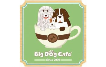 bigdog-featured-img