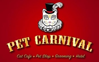 pet-carnival-featured-img
