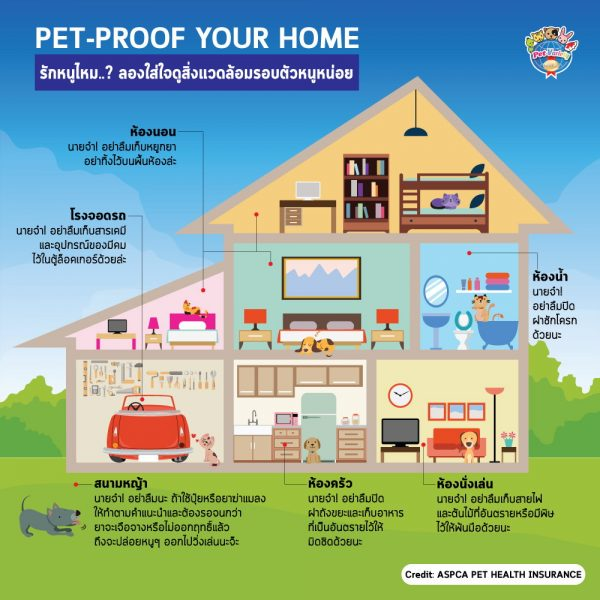 pet-proof-home-th