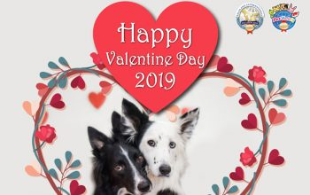 valentine2019-featured
